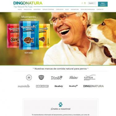 Web design and seo for Dingonatura